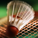 Badminton : Tournoi de Muizon