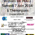 affiche_williamdepolli
