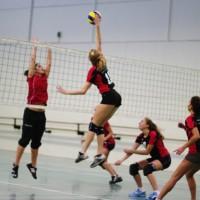 Tournoi féminin de volley ball